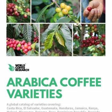 Coffee Varieties Catalog  Goes Global